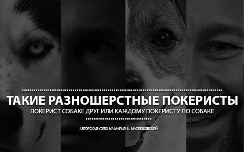Такие разношерстные покеристы (авторская колонка Марьяны Маслюковской)