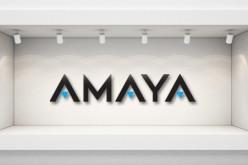 Финансовые возможности Amaya Inc. в 2015 году