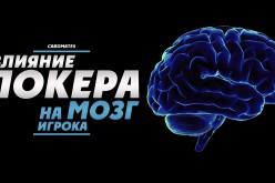 Влияние покера на мозг игрока